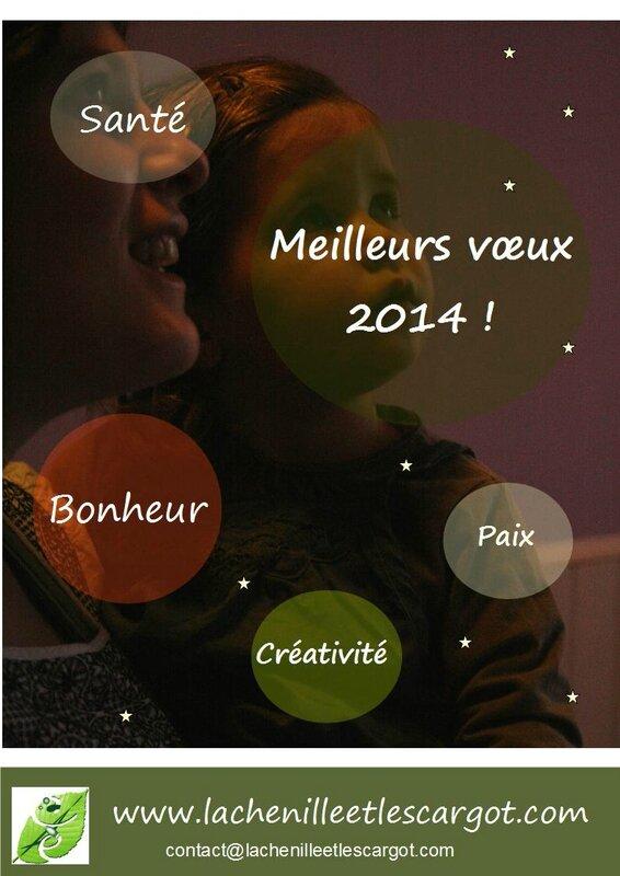 Voeux2014