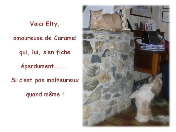 Elty amoureuse