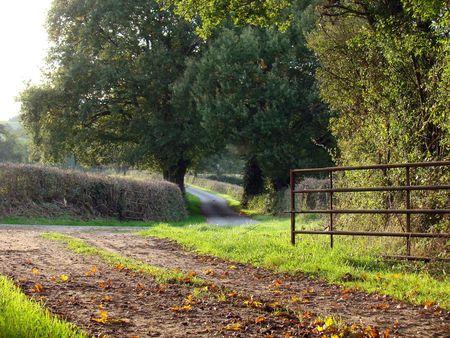 chemin_de_terre___goudron