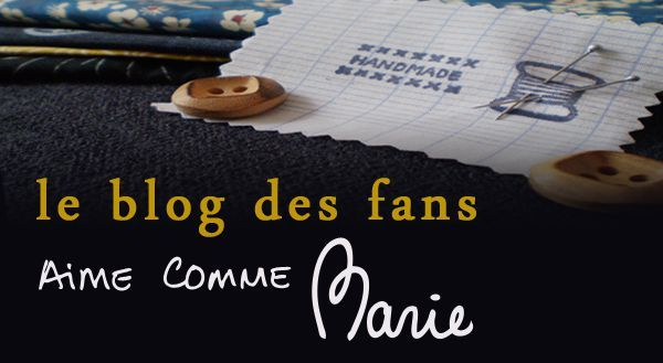 bouton blog des fans copie