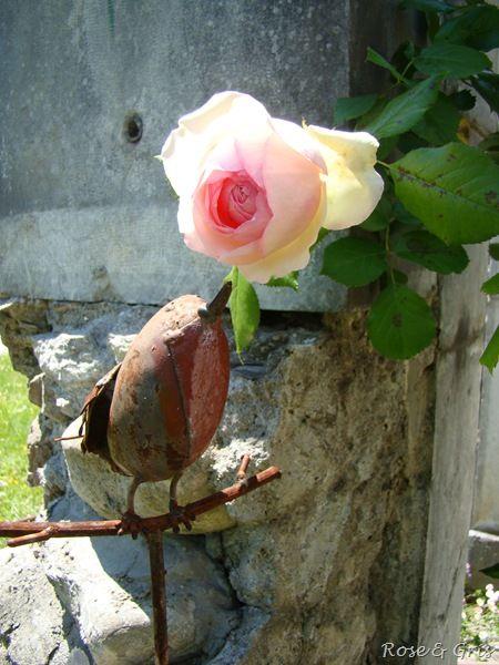 dialogue avec la rose