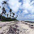 Huahine 2006 (61)plage côté océan