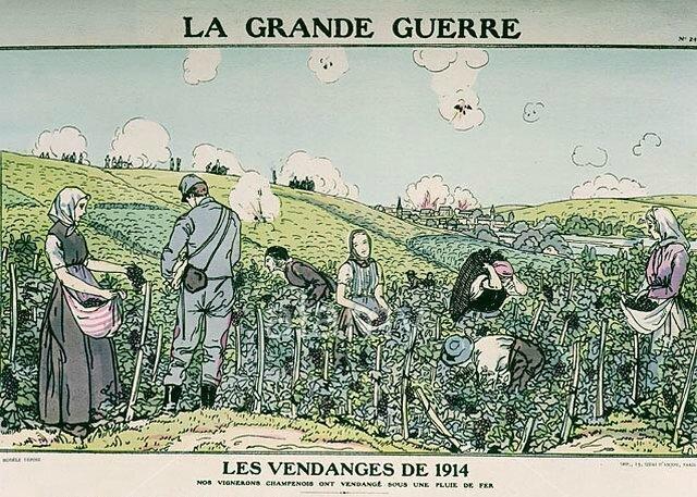 1914 vendanges