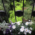 Jardinière printanière, côté jardin