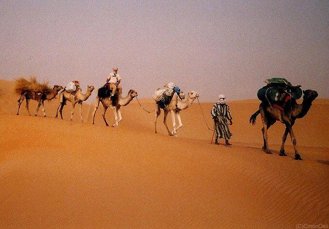mauritanie17