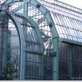 Serre, jardin des plantes