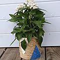 Id déco : un pot en corde décoré