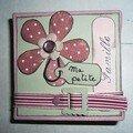 mini book canvas pour Prune