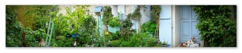 petite cour végétalisée verte