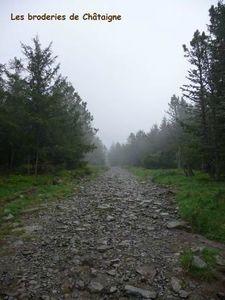 chemin du Mézenc