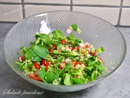 Salade fraîcheur 1