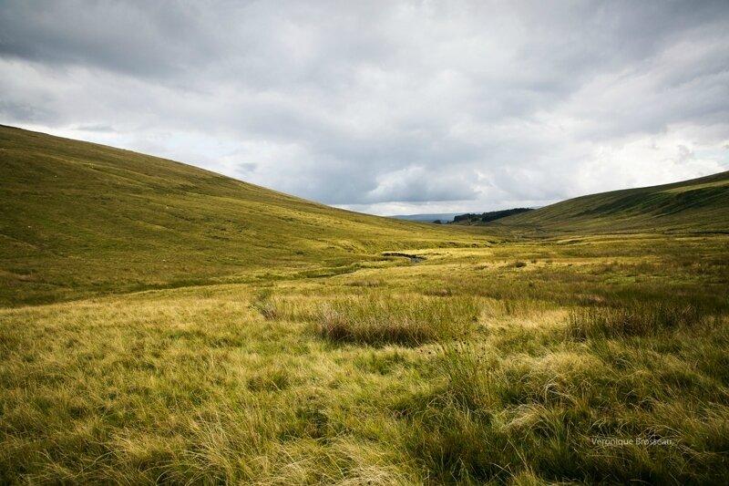 Pays de Galles 07