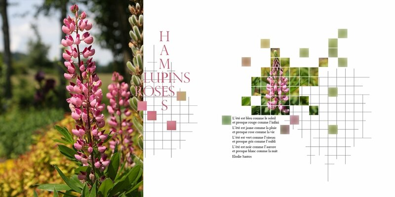 Lupins_Template n°31 DP by margote-1800