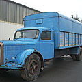 Un saurer de 1956 dans la collection