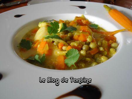 nage_saint_jacques_safran1