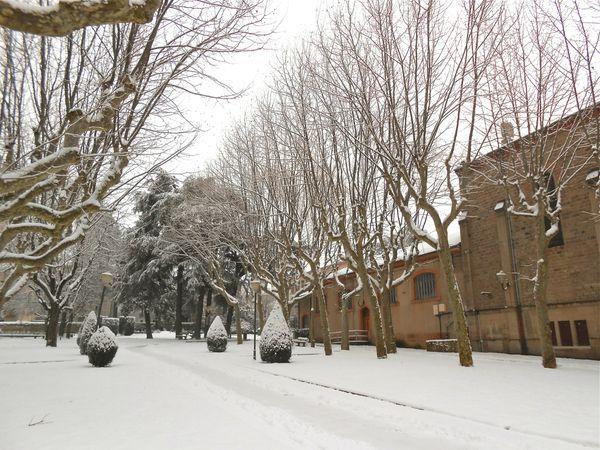 neige (11) 15 janv 2013