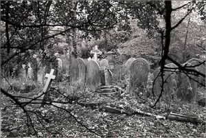 ch876c2_highgate_cemetery