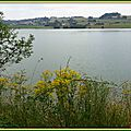 Lac du Rustaing 1006159