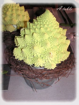 table_romanesco_023_modifi__1