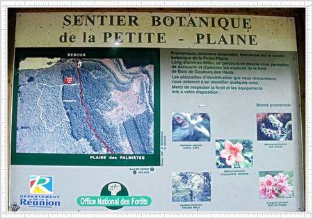 SENTIER_BOTANIQUE_PETITE_PLAINE_PANCARTE_PLAINE_PALMISTES