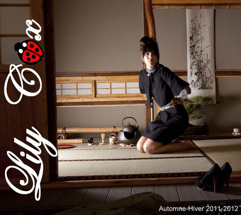 Automne-Hiver 2011-2012