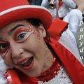 172-STEENVOORDE 2008 1 ere PARTIE