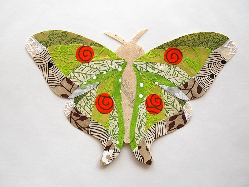 3763 papillon