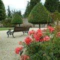 powerscourt house roses2