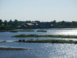 wetland_park