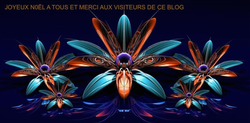 Fractale_bleu_fleurs_orange_fractales_violet_CGI_num_eacute_rique_art_r_eacute_flexions_4_Tailles_Home_Decor_Toile_Affiche___copie_3