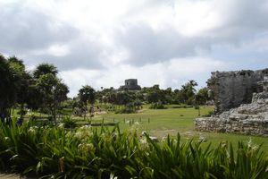 mexique août 2011 665