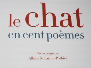 Montanapatch_livre_chat_8