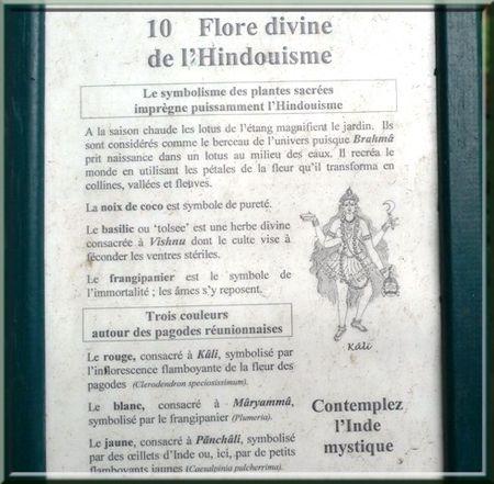 FLORE_DIVINE_DE_L_HINDOUISME