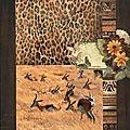 springbok (1)