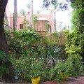 Jardin Majorelle, plantes exotiques 2