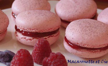 Macarons Framboise Violette Macaronette Et Cie