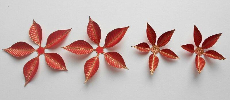 Poinsettia (7)