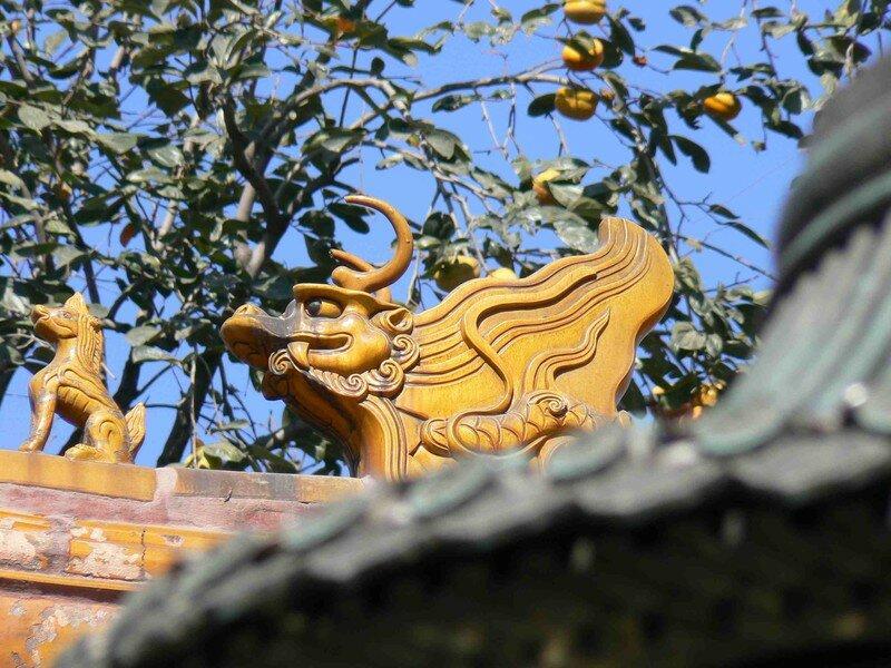 Dragon sur les toits