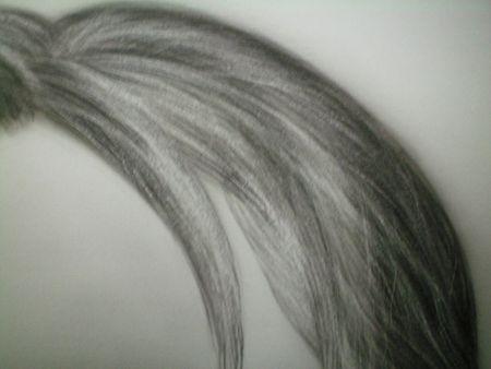 cheveu16_1_