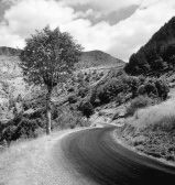 916206-road-through-mountains-the-cevennes-france-europe
