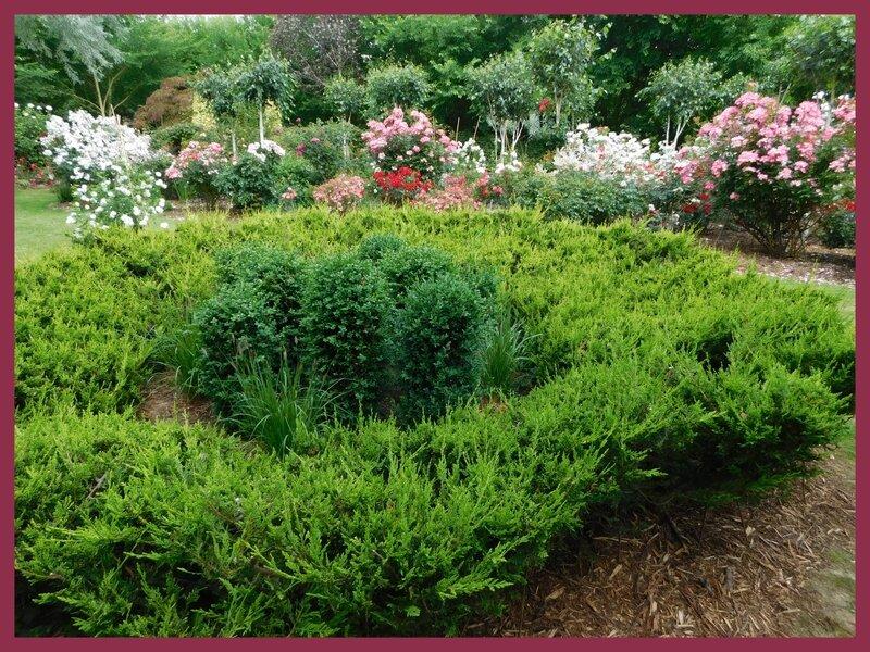 Jardin des Duo 03-0615