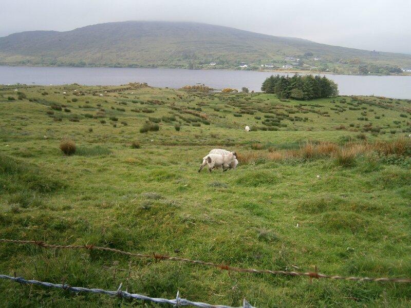 Irlande mai2014 049