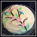 Gâteau fourré chocolat framboises...