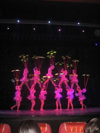 Beijing_Lunar_New_Year_2009_328