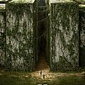 The maze runner - le film
