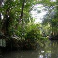 rivière indienne