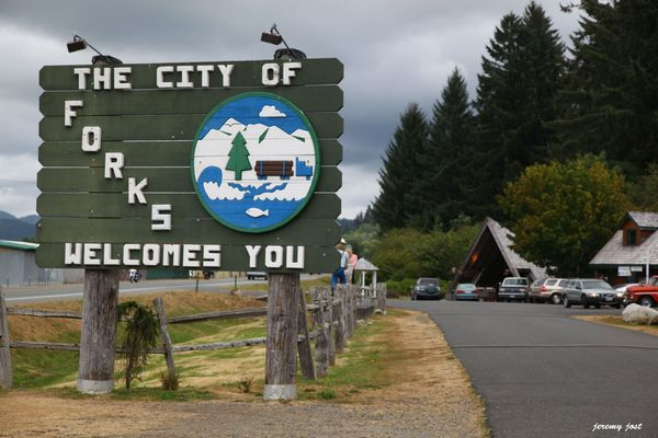 city of forks