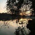 coucher de soleil sur l'étang_04