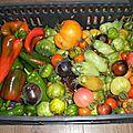 Ah, les derniers légumes d'été !
