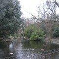 Saint Stephen's Green Park